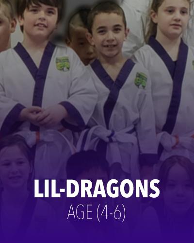 Barrie Karate Lil Dragons Program